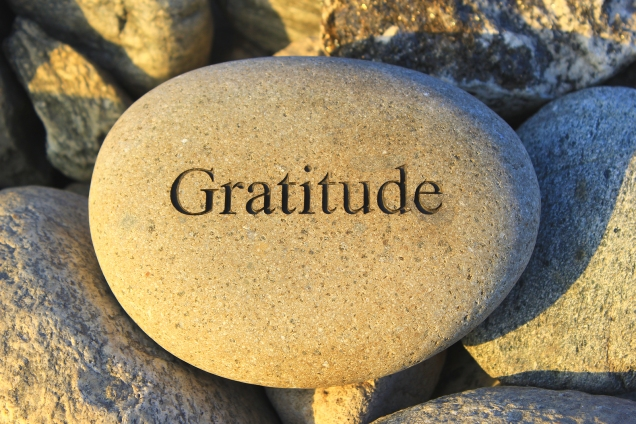 the word gratitude etched in a stone