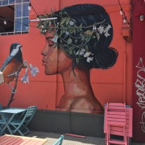 street-art-bird-girl