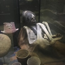 Mummy at Fonck Museum