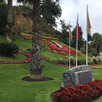 Viña flower clock