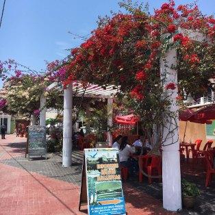 paracas-seaside