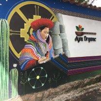 San Blas organic restaurant