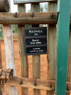Sheldrick Wildlife Trust: Maxwell's hom