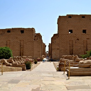 Line of sphinxes