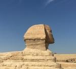 Sphinx in profile